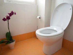туалет высота